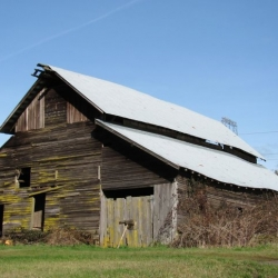 another-old-barn-photo-camp-creek-lane-county-oregon