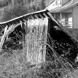 falling-down-building-photo-camp-creek-lane-county-oregon