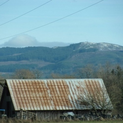 old-barn-photo-camp-creek-lane-county-oregon