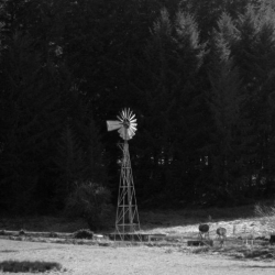windmill-photo-camp-creek-lane-county-oregon