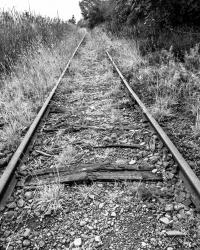 abandoned-rr-tracks