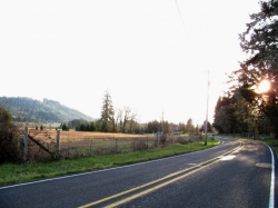 old-mohawk-road-lane-county-oregon-picture