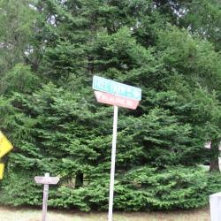 tree-farm-road-sign-lane-county-oregon